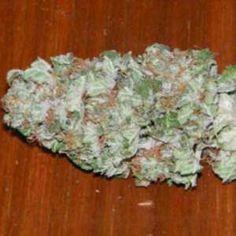 Buy og kush and medical marijuana online - Cannabis Dispensary Store Cannabis Seeds For Sale, Cannabis Seeds Online, Cannabis Oil, Growing Marijuana Indoor, Cannabis Growing, Cannabis Plant, Kingston, Pineapple Kush