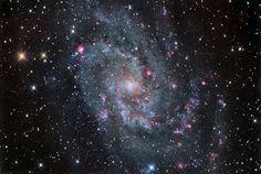 M33 pinwheel galaxy photo, courtesy Chris Schur
