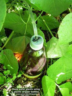 Riego por goteo casero y económico - Jardineria