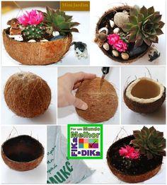 Você sabia que, na natureza, aquele coco delicioso que você toma pra se refrescar, demora 10 anos para se decompor?     Felizmente ele já...