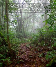 Ritangzhenshan Trail is a less known hike in southern Taiwan that shares a trailhead with southern Taiwan's most popular hike, Beidawushan. Hikers that don't want to deal with the long …