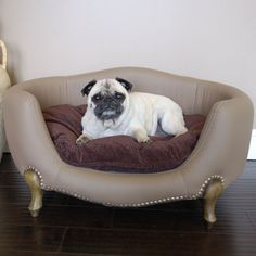 dog bed for living room