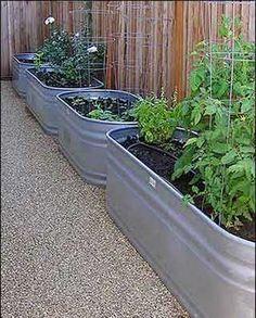 Jardin potagé crée avec plusieurs bacs en zinc percés et alignés le long d'une palissage. Une idée à reprendre pour décorer terrasse et balcon.