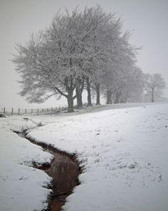 *Winter (by kennybarker)