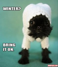 I don't like sweaters and winter!!!!!!!!!!!!!!