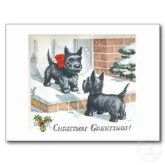 Xmas #scotties. Scottie Facts you May Not Know: http://wp.me/p3czXo-os #scotty