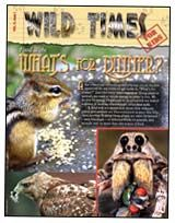 Check out this free copy of Wild Times magazine for kids on food webs. Teacher's guide also available.