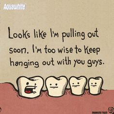 Top Oral Health Advice To Keep Your Teeth Healthy. The smile on your face is what people first notice about you, so caring for your teeth is very important. Unluckily, picking the best dental care tips migh Surgery Humor, Dental Surgery, Dental Implants, Dental Hygienist, Dental Care, Dental Assistant, Tooth Extraction Aftercare, Tooth Extraction Healing, Wisdom Teeth Funny