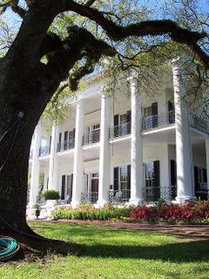 Dunleith Plantation, Natchez, Mississippi, the most amazing southern architecture Southern Plantation Homes, Southern Mansions, Southern Plantations, Southern Homes, Southern Style, Southern Charm, Southern Living, Southern Nights, Southern Architecture