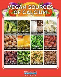 Great sources of calcium