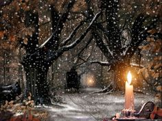 Xmas Snow Nature Candle Wallpaper #christmasvillage #kerstdorp bos
