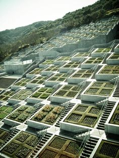 153fb9e8b39 Awaji Yumebutai International Conference Center by Tadao Ando  Sustainable  Architecture