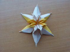 Origami Narcissus - Paper Melon