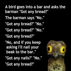A bird walks into a bar… Monty Python, Get Nails, Puns, Walks, Jokes, Bird, Sayings, Twitter, Bartender