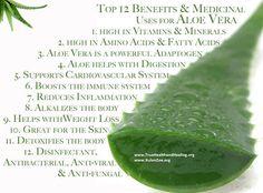 ~Top 12 Benefits of Aloe Vera~