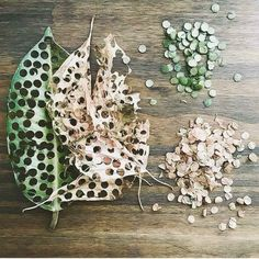 Confetti Made From Fallen Leaves! Loved This Zero-Waste Decoration Idea Confetti Made From Fallen Leaves! Loved This Zero-Waste Decoration Idea Perfect Wedding, Dream Wedding, Wedding Beauty, Wedding Confetti, Zero Waste, Reduce Waste, Big Day, Getting Married, Something To Do