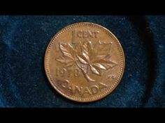 1978 Canada One Cent (Mintage 330 Million) Canadian Penny, Canadian Coins, Rare Coins Worth Money, Valuable Coins, Canadian Animals, Rare Pennies, Gold Prospecting, Foreign Coins, What Is Bitcoin Mining