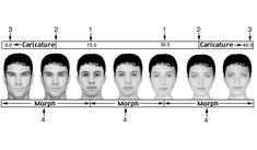 24 photo of 30 for masculine vs feminine faces