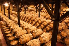 Quite some barrels in the cellar of Bodegas #Muga in #Rioja Spain