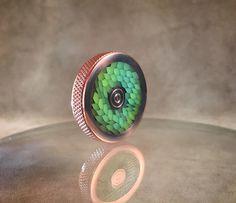 Dragon Skin Coin by Steven Robbins