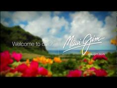 Maui Jim - Welcome to Color