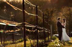 Blog - New York Wedding Photographer Susan Stripling