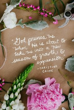 """""""God prunes us when He is about to take us into a new season of growth & expansion.""""  Christine Caine"""