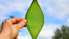 Vida-EcoVerde : Silk Leaf: Hoja sintética capaz de generar oxígeno...