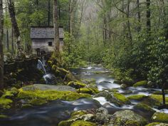 Watermill on Roaring Fork Loop - Gatlinburg TN