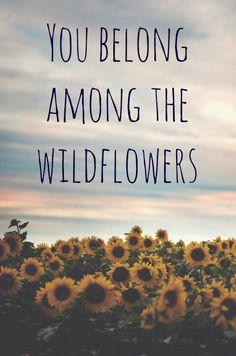 """You belong among the wildflowers"" - Tom Petty"