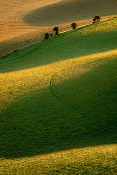 """40008km: """" Curvature flickr.com """" enchantedengland: Cold Combes in the South Downs, near Brighton, East Sussex."""