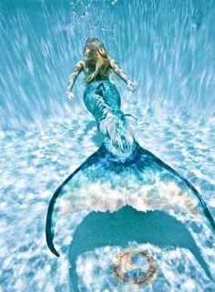 Bilder Von Echten Meerjungfrauen