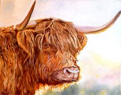 Highland Cow Painting Original Canvas by M James Scottish Farm Animal Art