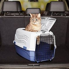 Pet Carry House Case Outdoor Dog Cat Kennel 23x15x13 Inch Top Open Box Travel