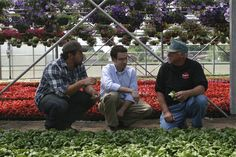 Loved this webisode from the Freshpedition! It's the same video about Bibb lettuce again.....#GEfresh MD