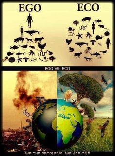 ~ Ego / Eco ~ www.antifurcoalition.org