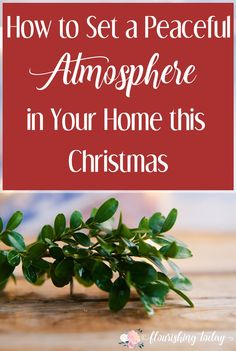 Do you want a peaceful atmosphere in your home this Christmas? Join us as we prepare the atmosphere for peace with a few simple home decorations for Christmas.