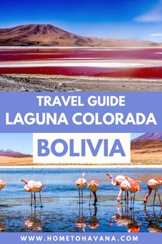 Backpacking South America, South America Travel, Bolivia Travel, Travel Tips For Europe, Travel Route, Beautiful Sites, Ultimate Travel, Day Tours, Digital Nomad