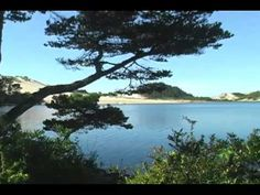 Jessie M. Honeyman Memorial State Park - YouTube. I've read it's a great spot to wander the sand dunes.