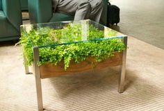 Pocket : Fill Your Home With Greenery With The Living Table