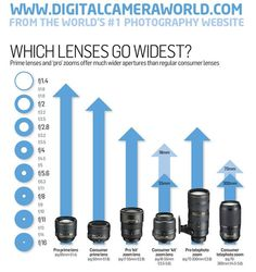 Which are professional and which are consumer lenses.