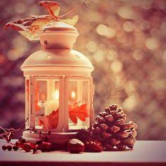 feuille d'automne et senteur de boules de pins