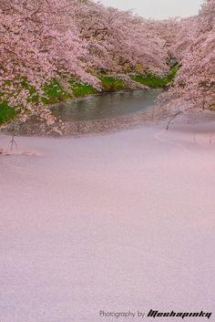 東京カメラ部 New:Yoshihito Watanabe