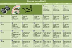 Muscular Arms March