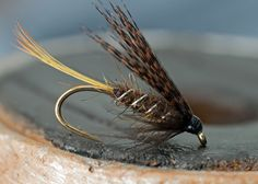 Welcome to Classic Winged Wet Fly Patterns Trout Series