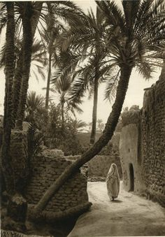 Street Scene, Lehnert & Landrock - Biskra Oasis - Gravure, photo by Rudolf Franz Lehnert Photo Marrakech, Old Pictures, Old Photos, People Around The World, Around The Worlds, Pyramids Egypt, Moroccan Print, Poster Photography, Space And Astronomy