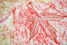 Leaf Rubbings:  During a nature hike, the children could collect leaves.  Back in the classroom, the children could make rubbings with the leaves.  Each child would create a unique picture, using different leaves and colors of crayons.  The children would see that nature creates beauty.  They would also see that they can use materials from nature to make art.