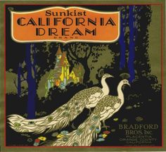 California Dream Peacock Orange Fruit Crate Label