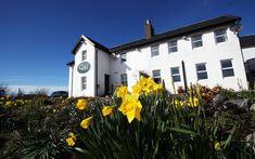 Coll Hotel Review, Isle of Coll, Scotland   Travel Scotland Hotels, Scotland Travel, Best Hotel Deals, Best Hotels, Cosy Room, Local Seafood, Park Restaurant, Scottish Islands, Big Island