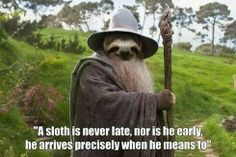Lord of the Rings Gandalf Sloth
